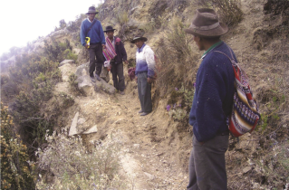 Amunas de Tupicocha en Huarochirí