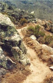 Amuna de Huarochiri