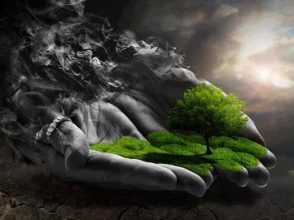 El futuro de la tierra en nuestras manos