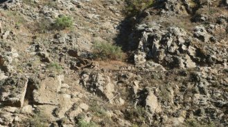 ....subiendo la cuenca del Chancay-Huaral apreciamos mas caminos incas.....