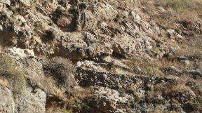 .....por esta vía el inca se trasladaba .....