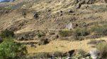 .....y más caminos , mudos testigos del desarrollo Inca