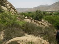 .....cuenca media de Huaral vemos Qhapac Ñan en estado de abandono.......