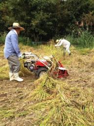 Maquinaria para la preparación del suelo