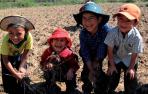 10 Niños de las escuelas de Matara y San Marcos Cajamarca participando alegremente en la crianza de diversidad y variabilidad de granos andinos