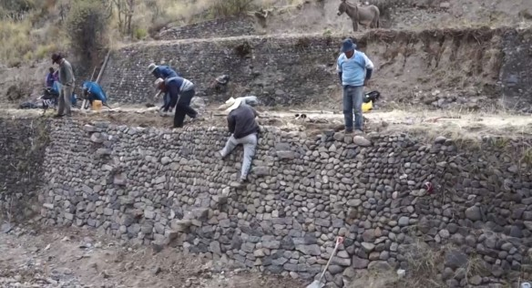 Rehabilitando andenes en Caylloma - Arequipa