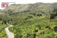 Andenes de Andamarca - Ayacucho